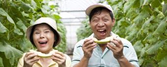 保丽净®专家建议 假牙生活文章页