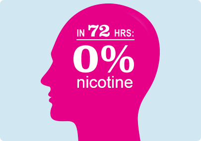 Illustration of a head indicating that the supply of nicotine in the bloodstream is gone within 72 hours of stopping smoking.