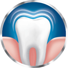 Healthy gums and teeth icon