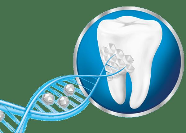 Паста за зъби Sensodyne | Паста Repair and Protect