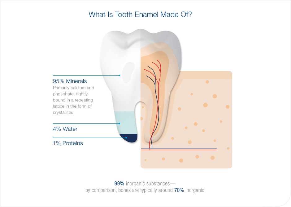 Split visulaization of tooth composition