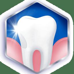 Consulta a tu dentista regularmente