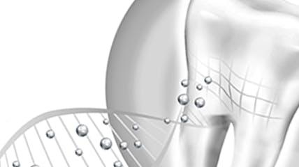 Sensodyne® Repair and Protect