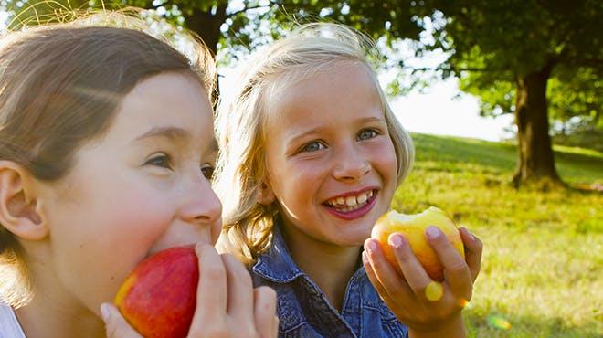 Met een stappenplan voor tanden poetsen wordt het verzorgen van tanden makkelijker voor kinderen