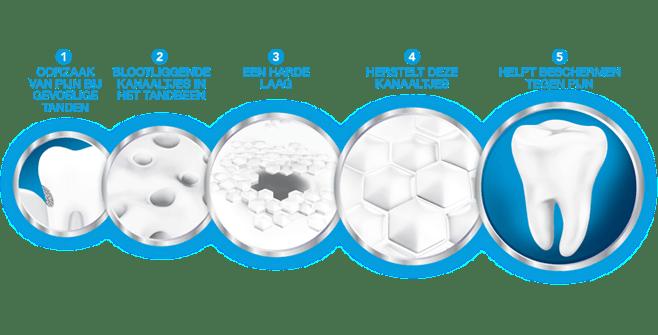 De werking van Sensodyne Repair & Protect