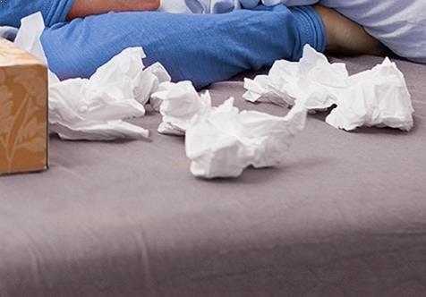 Wie sich Grippeviren verbreiten