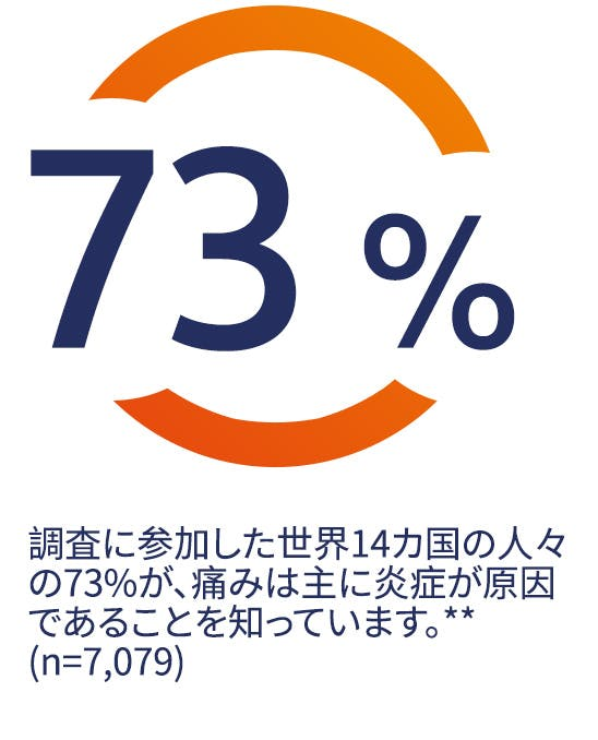 調査に参加した世界14か国の人々の73%が、痛みは主に炎症が原因で起こることを知っています。*(n=7,079)