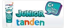junior teeth
