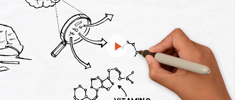 司各脫, 司各脫鰵魚肝油, DHA, 兒童發展, 腦部發育, 認知發展,  魚肝油的好處