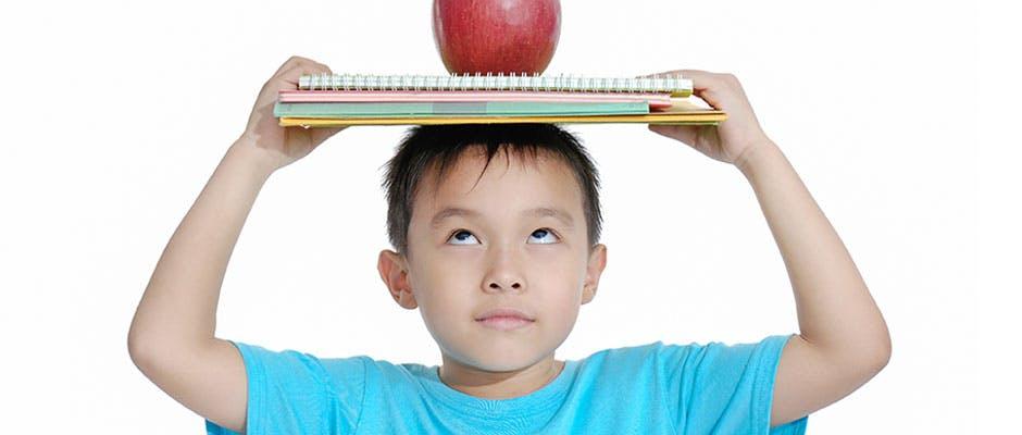 有助腦部發展的食物, 認知發展, 有助腦部發展的高營養食物, 兒童腦部發展