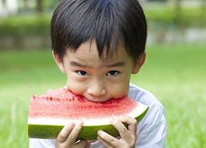 司各脫, 司各脫鰵魚肝油, DHA, 兒童發展, 兒童食譜, 兒童午膳, 偏食